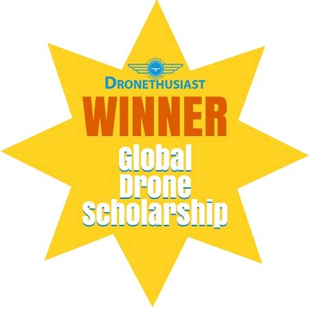 Review my scholarship essay 2017